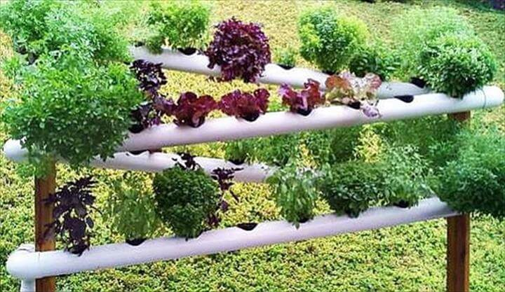 48 diy projects out of pvc pipe you should make diy crafts for Domestic garden ideas