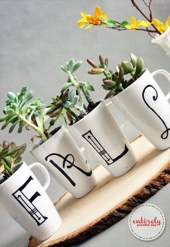 DIY Monogram Mug Succulent Indoor Display