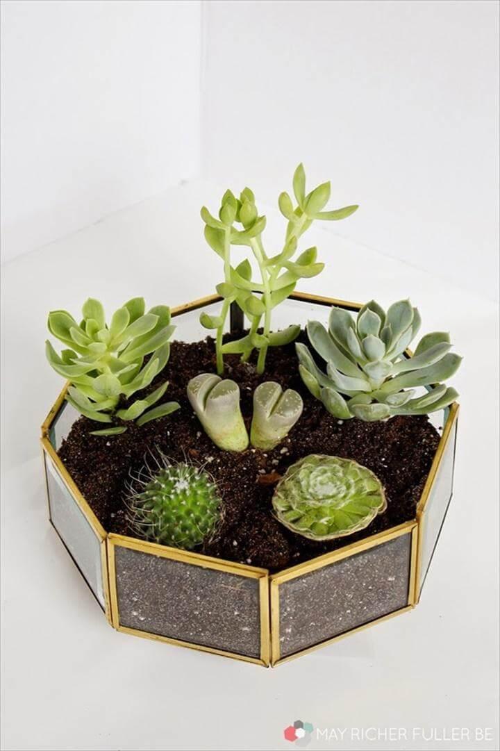DIY Succulent Terrarium Made of Brass Light Fixture