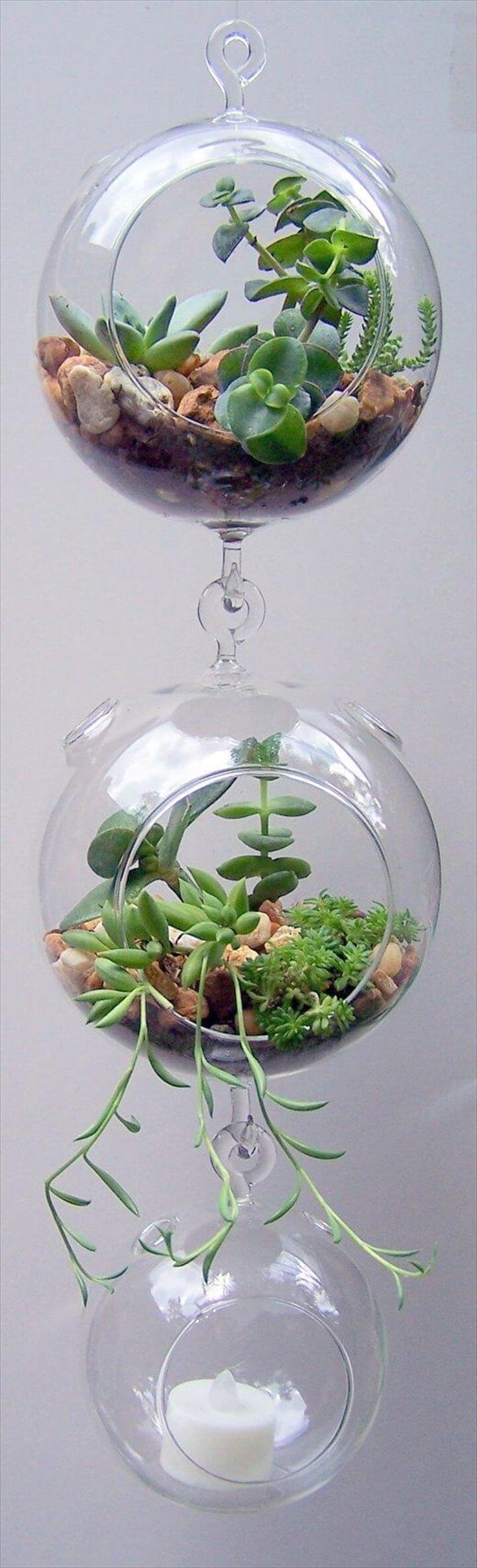 DIY Terrarium Glass Hanging Succulent Planters