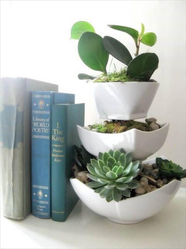 DIY Tiered Succulent Indoor Display