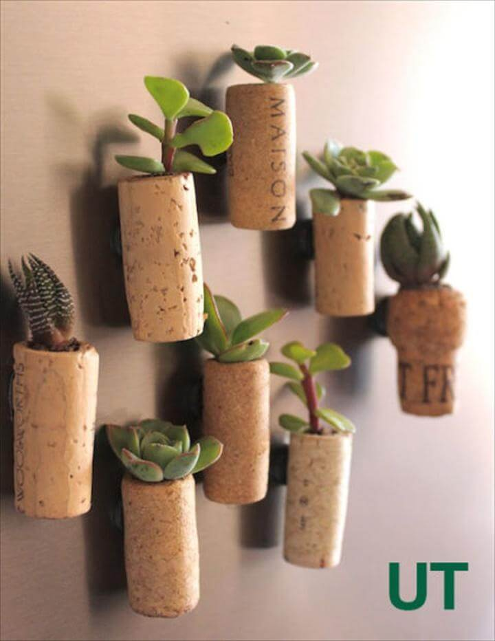 Wall Hanging Succulent Wine Corks