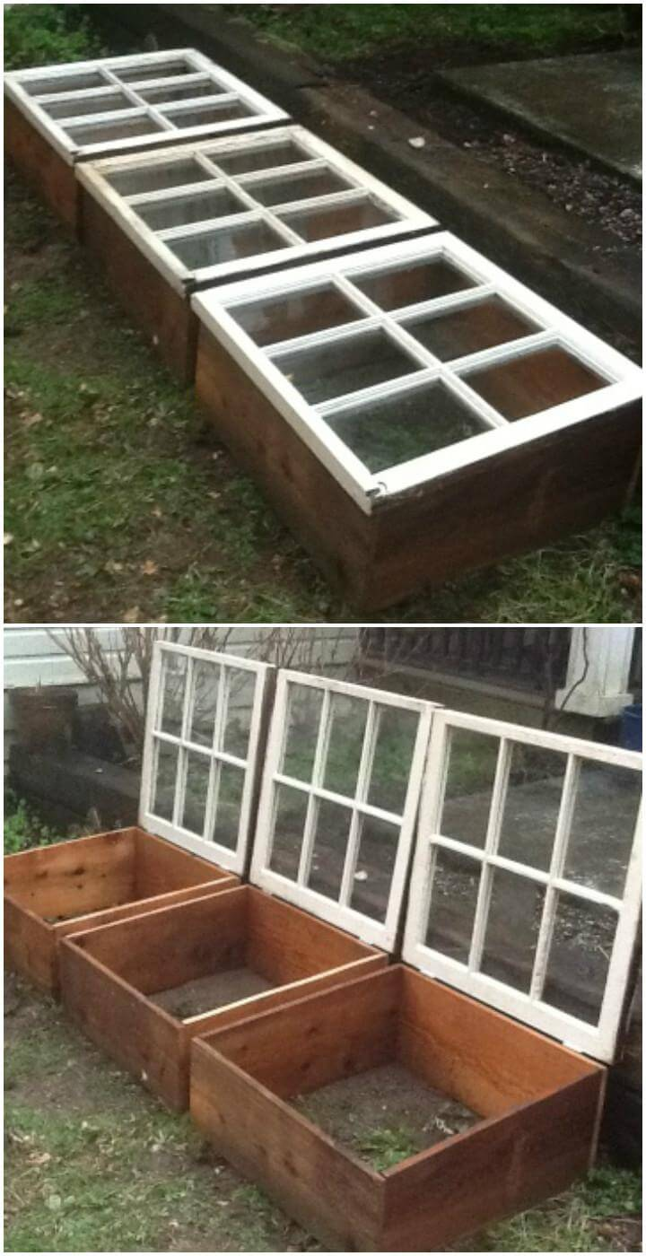 DIY Salvaged Cedar Wood and Old Windows Greenhouse