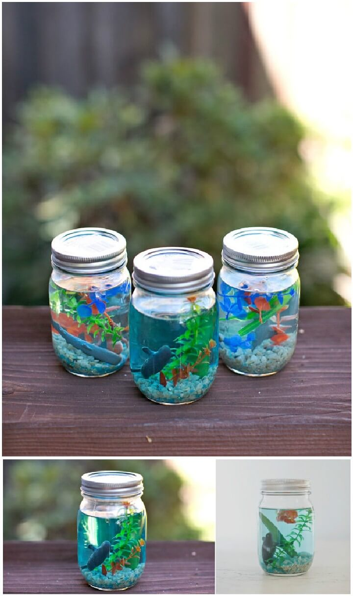 DIY Mason Jar Aquarium Gifts
