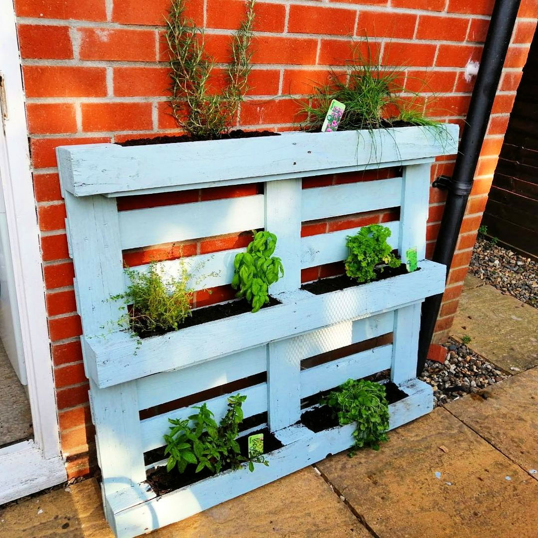 Do you have some old wooden pallets that youre looking to recycle. One of the best ways to use old pallets is to make them a part of a pallet garden
