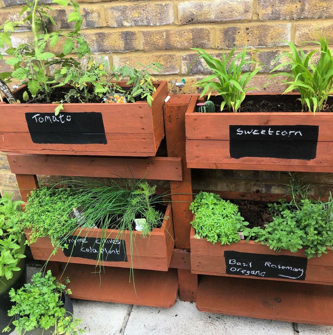 simple Herb Garden