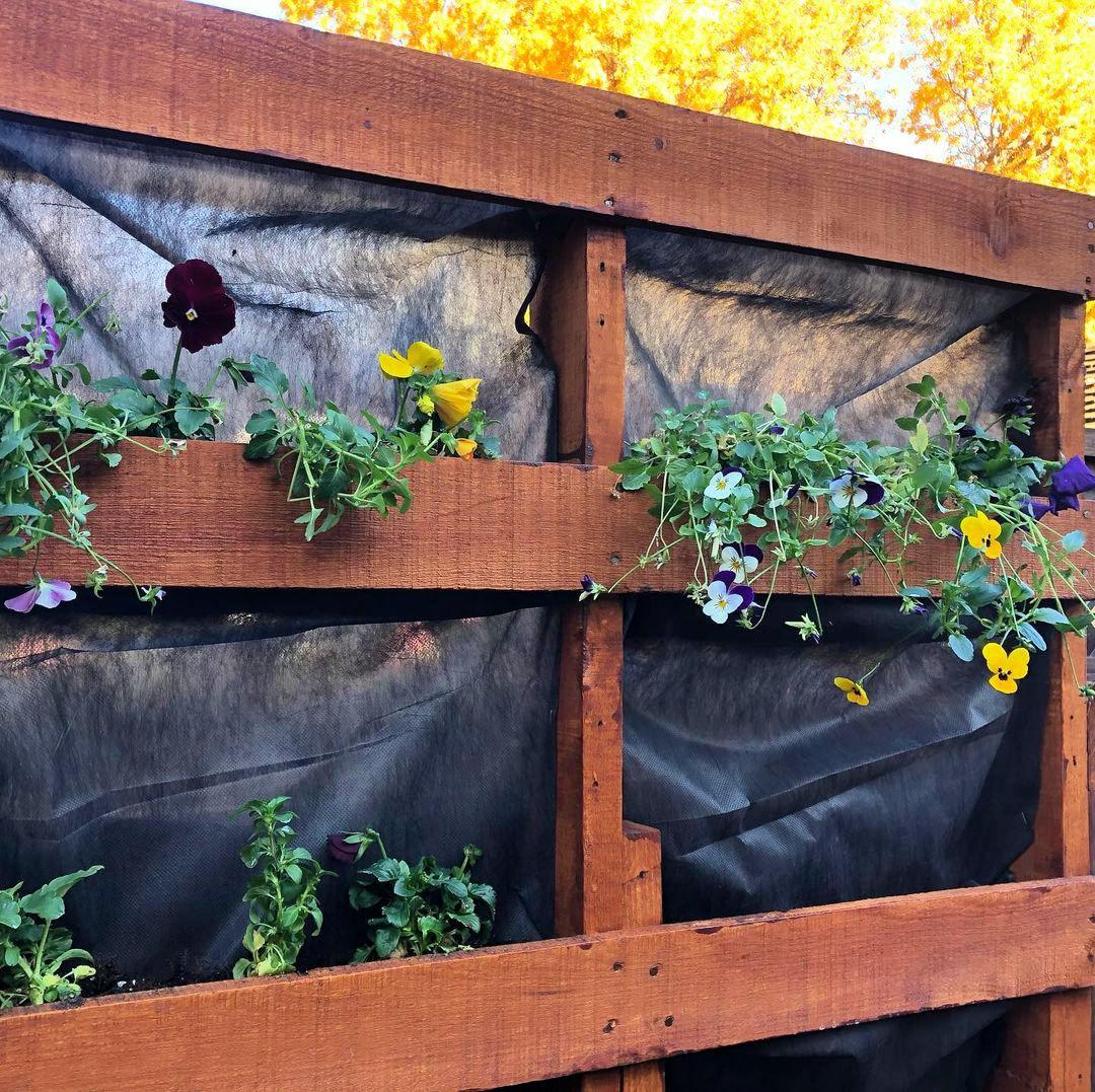 60 DIY Pallet Garden ideas to Update Your Gardens - Pallet Ideas - Pallet Furniture Ideas - Pallet Projects - DIY Projects - DIY Crafts - DIY Ideas