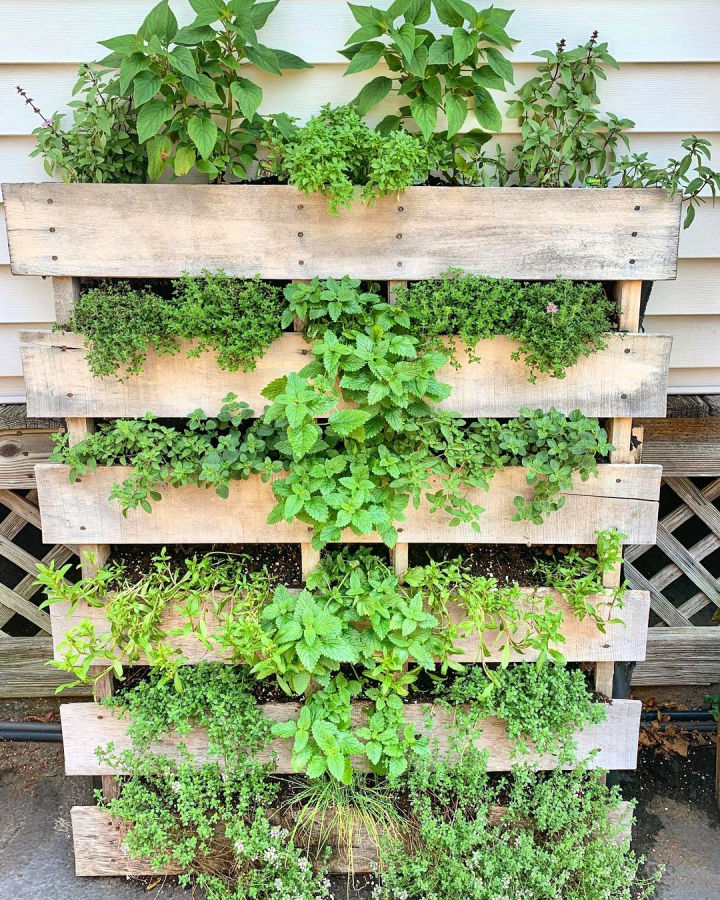 looking forward to seeing all your pallet garden ideas