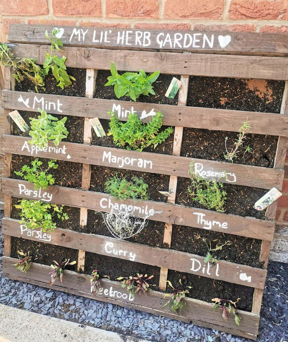 All you need to create this simple vertical garden is landscape fabric a staple gun and a Pallet.